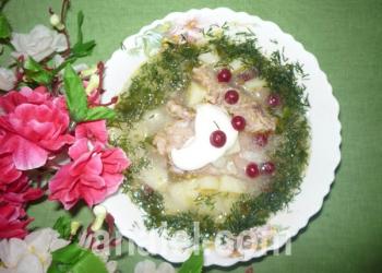 суп из свинины с клюквой рецепт