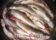 рыба на овощной подушке рецепт